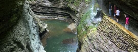 Rainbow Falls is one of Fingerlakes Transport an Tour Service.