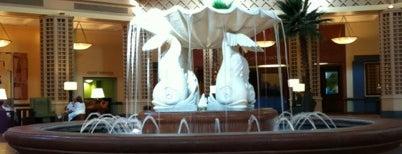 Dolphin Lobby Fountain is one of สถานที่ที่ Cindy ถูกใจ.