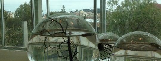 CosmoCaixa is one of 101 llocs a veure a Barcelona abans de morir.