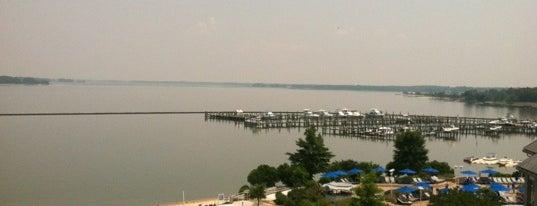 Hyatt Regency Chesapeake Bay Golf Resort, Spa And Marina is one of Hotel - Motels - Inns - B&B's - Resorts.