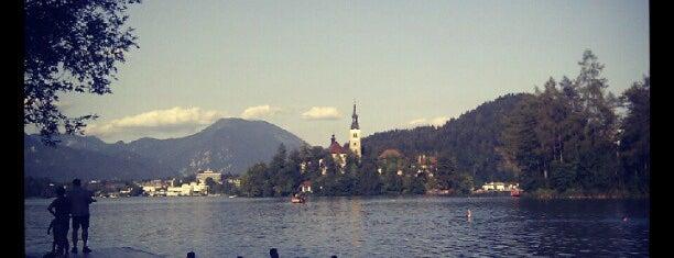 Velika Zaka is one of Bled.