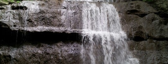 Sherman Falls is one of Hamilton Falls.