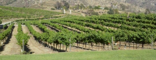Orfila Vineyards and Winery is one of SD.