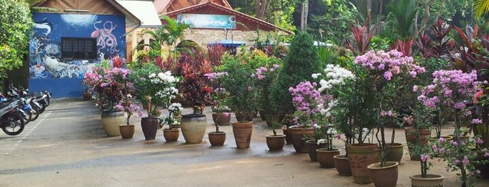 Taman Botanikal, Ayer Keroh is one of Attraction Places to Visit.