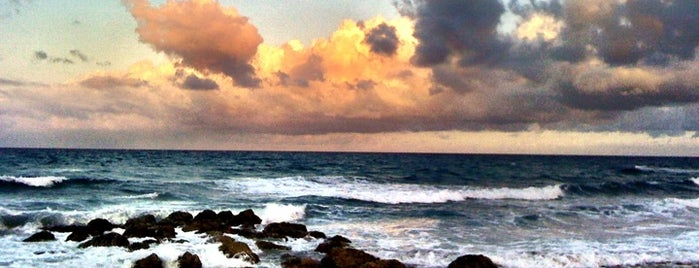 Red Reef Park is one of Kids love South Florida.