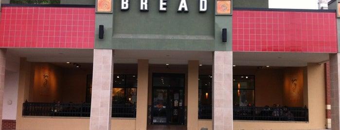 Panera Bread is one of ᴡ 님이 저장한 장소.