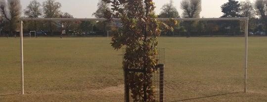 Dundonald Recreation Ground is one of Posti che sono piaciuti a Barry.