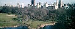 New York Favorites