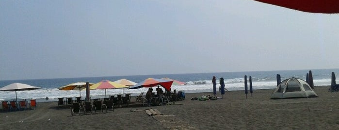 Playa Cuyutlán is one of Reenyさんのお気に入りスポット.