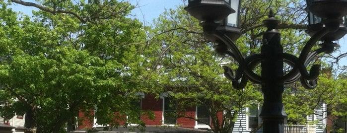Big Tree Inn is one of Must-Visit Food in Geneseo.