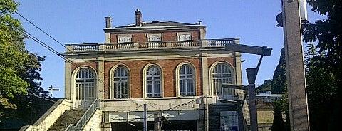 Station Musée de Sèvres [T2] is one of mody.