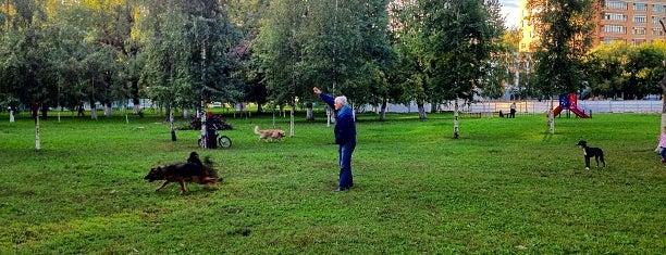 Парк «Собачка» is one of Orte, die Алена gefallen.