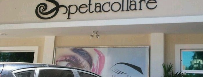 Spetacollare is one of สถานที่ที่บันทึกไว้ของ Rebeca.