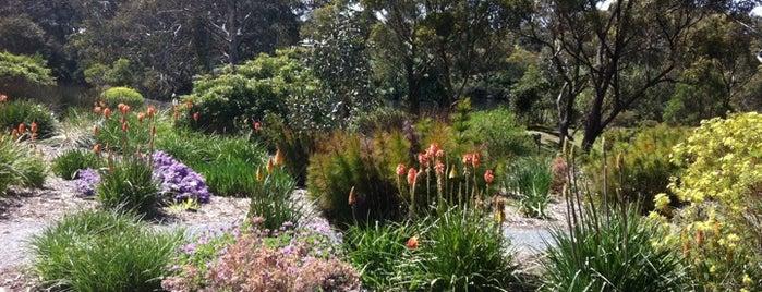 Wittunga Botanic Garden is one of Posti che sono piaciuti a El Micho.