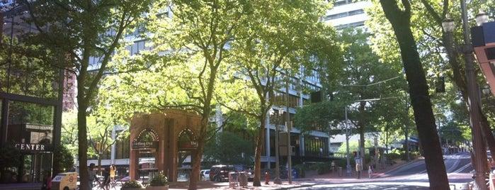 Downtown Portland is one of Portlandia.