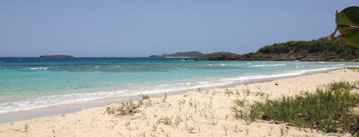 Zoni beach is one of Puerto rico.
