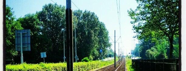 Tramhalte Station Lelylaan is one of marzeno.