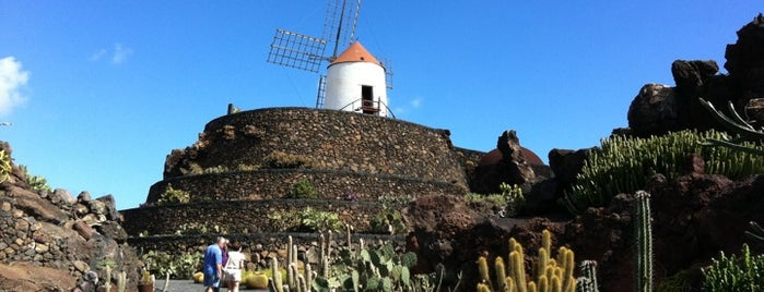 Jardin de Cactus is one of Lanzarote.