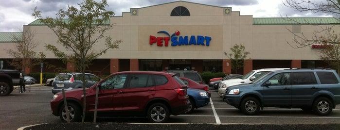 PetSmart is one of Lugares favoritos de Erin.