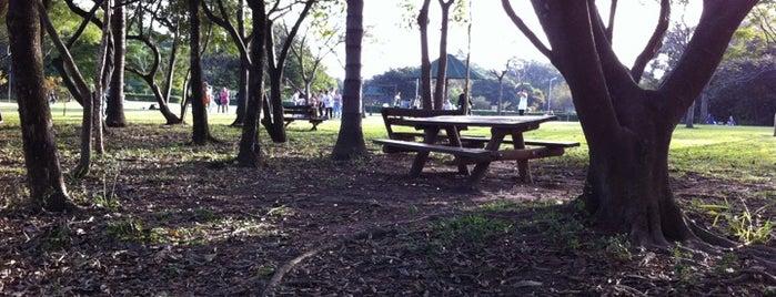 Parque Villa-Lobos is one of Bares/Cafés, Restaurantes, Baladas São Paulo e ABC.