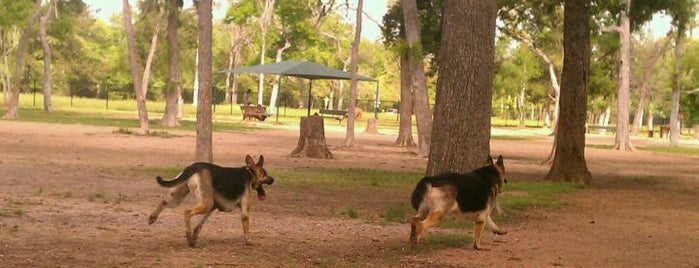 Bay Area Dog Park is one of Locais curtidos por ESTHER.