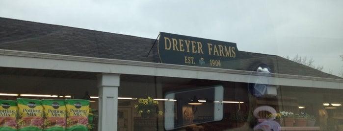 Dreyer Farms is one of Jerz.