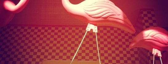 Pink Flamingo is one of Andrej 님이 저장한 장소.