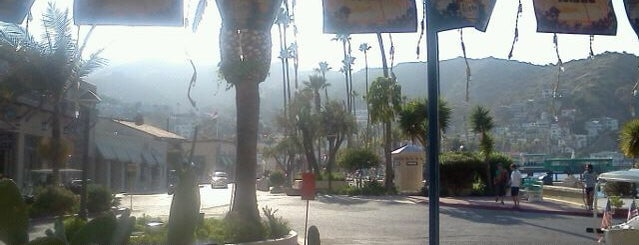 Santa Catalina Island is one of Los Angeles LAX & Beaches.