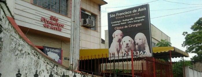 São Francisco de Assis is one of Henrique 님이 좋아한 장소.