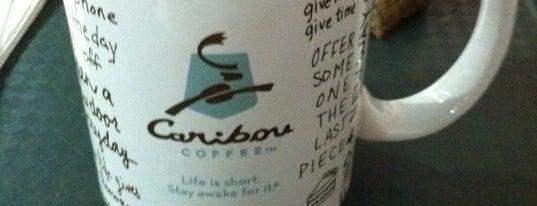 Caribou Coffee is one of Lugares favoritos de Hayo.