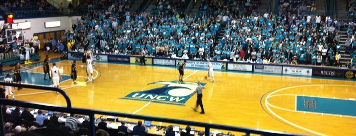 Trask Coliseum is one of NCAA Division I Basketball Arenas/Venues.