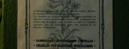 Mezcaloteca is one of Guía Lujo Oaxaca (como la publicamos en abril'11).