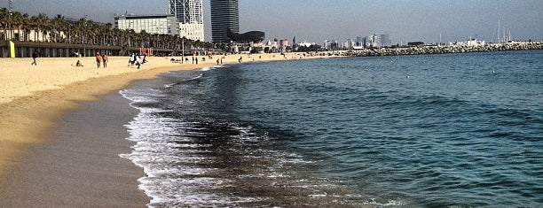 Plage de la Barceloneta is one of Barcelona.