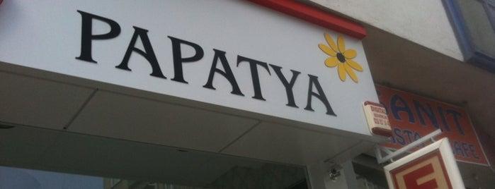 Papatya Eczanesi is one of Pendik Eczaneleri.