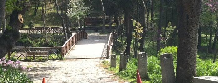 Yıldız Parkı is one of Favorite Date Spots.