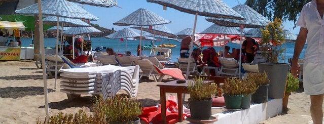 Muzo Beach Club is one of Lugares favoritos de Duygu.