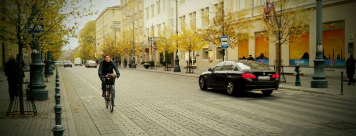 Gedimino prospektas is one of Best of Vilnius.