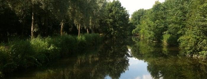 Bygholm Park is one of Orte, die Erkan gefallen.