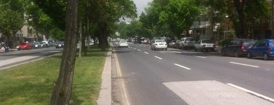 Mareşal Fevzi Çakmak Caddesi is one of CADDE-SOKAK.