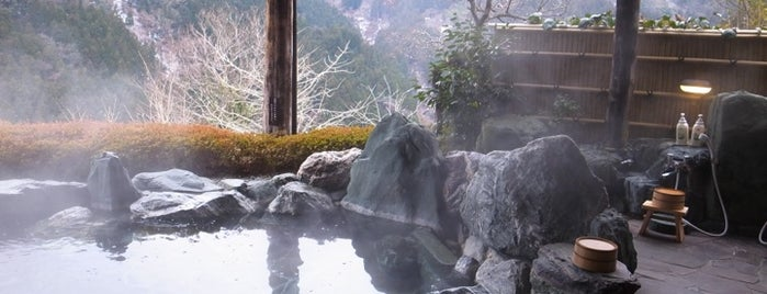 新祖谷温泉 ホテル かずら橋 is one of Japan.