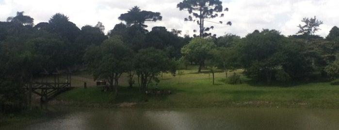 Tubo Jardim Botânico is one of Curitiba.