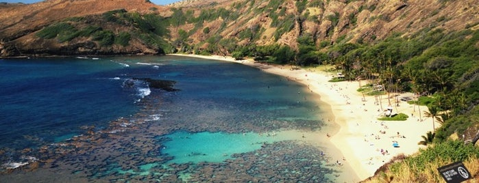 Hanauma Bay Nature Preserve is one of Hawaii.