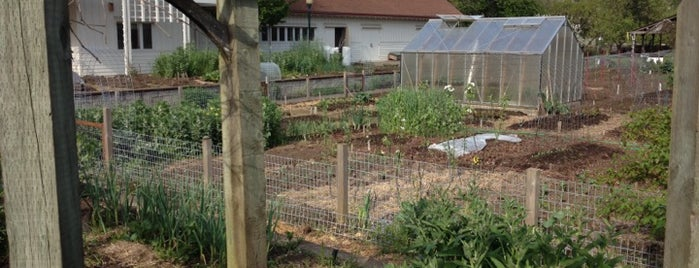 UO Urban Farm is one of Posti salvati di PenSieve.