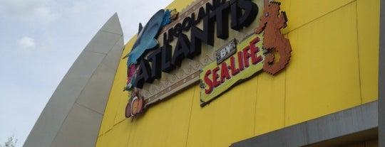 Sealife Atlantis is one of Sea Life.