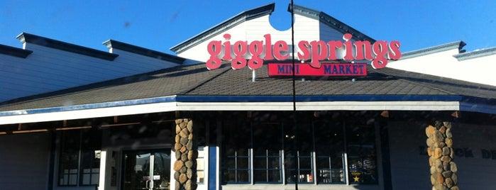 Giggle Springs Mini Market is one of Nicole 님이 좋아한 장소.