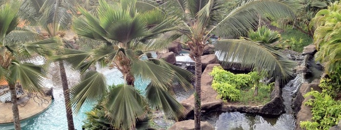 Ho'olei at Grand Wailea Resort is one of Lieux qui ont plu à Gabrielle.