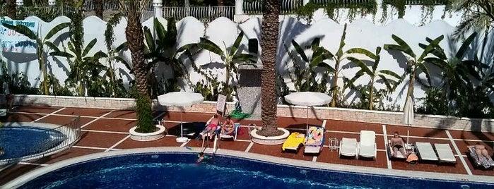 Hotel Flamingo is one of Perfect week in Olideniz.
