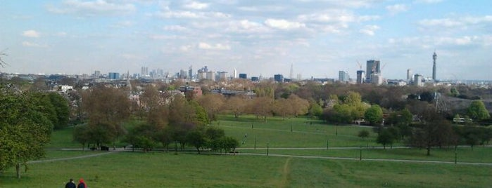 Primrose Hill is one of Tired of London, Tired of Life (Jan-Jun).