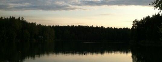 Северное Озеро is one of Orte, die Елена gefallen.