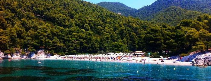 Kastani Beach is one of Skopelos Island.